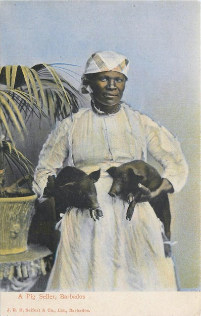 Black Americana Postcard - A Pig Seller, Barbados-No. 80760