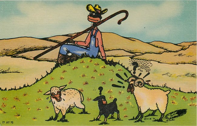 Black Americana Postcard Black man on top of hill watching sheep
