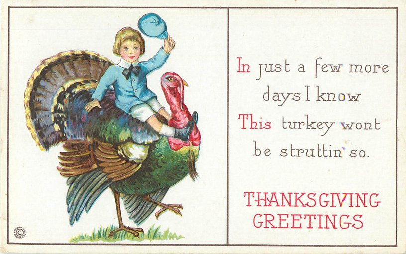 Thanksgiving Greetings Postcard - Boy riding on turkey's back.