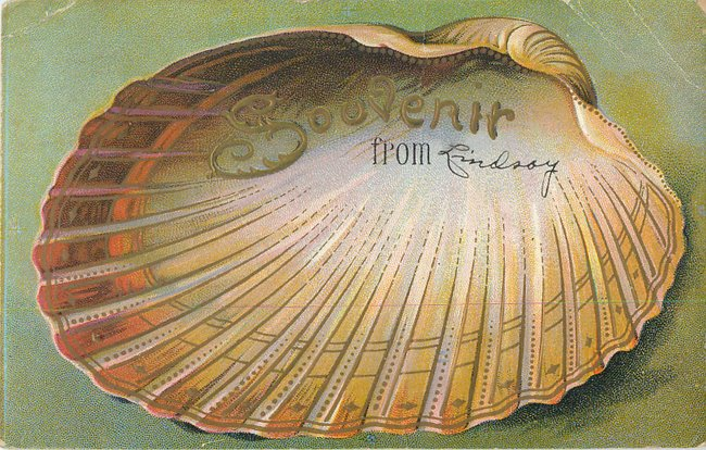 """Souvenir From"" card. Large open half seashell (copy 2)"