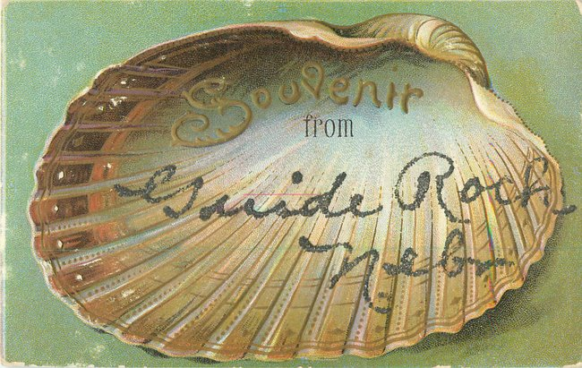"""Souvenir From"" card. Large open half seashell (copy1)"