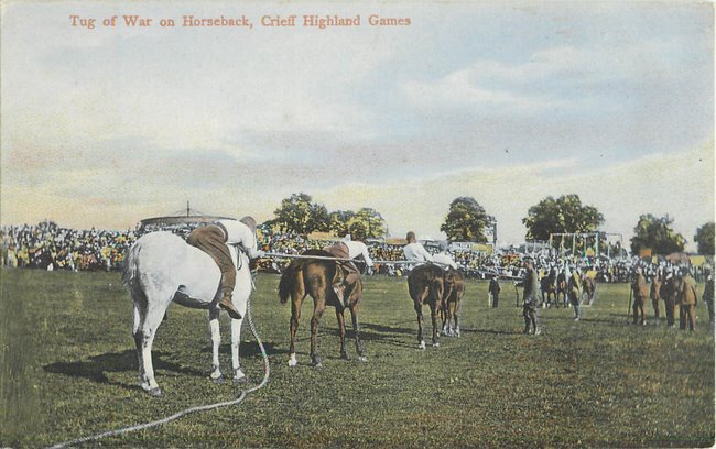 Tug of War on Horseback, Crieff Highland Games