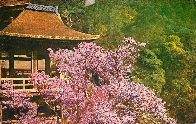 Hut with pink, flowery tree in Japan