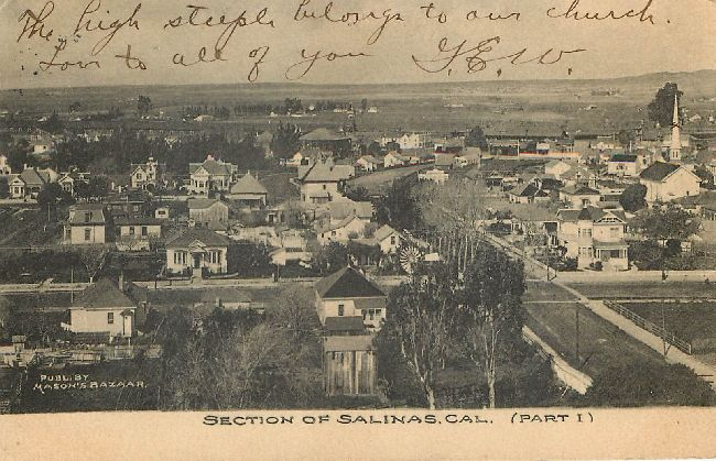 Section of Salinas, California Postcard Postmarked 1907