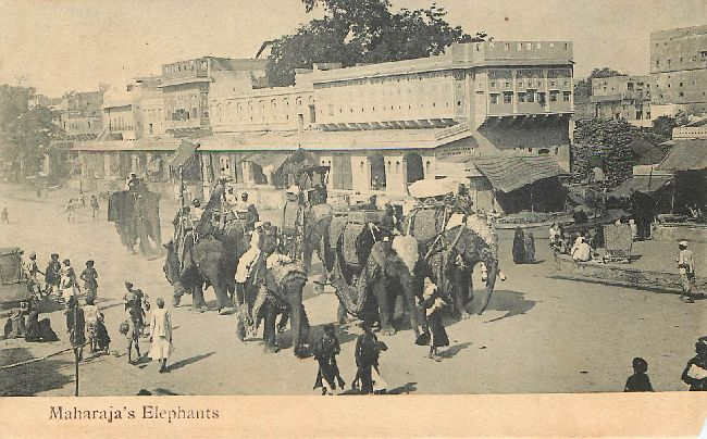 Maharaja's Elephants Royalty India Postcard
