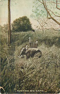 Hunting Big Game - Hunting Postcard - Postmarked 1910