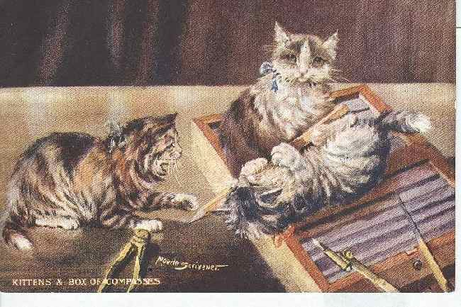 CAT Postcard SIGNED MAUDE SCRIVENER