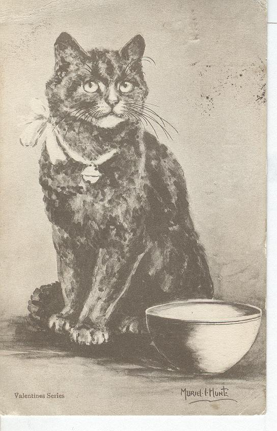 CAT Postcard SIGNED Muriel-Hunt Valentines Series 1905