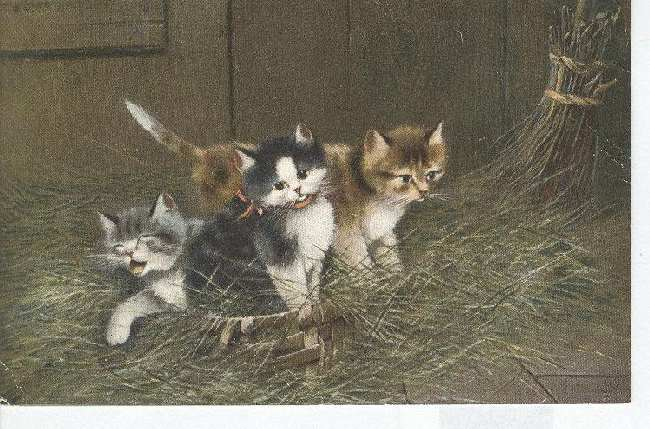 "CAT Postcard ""Kittens in a Basket"""