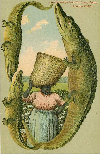 A Cotton Picker Alligator Border Postcard from Sunny South