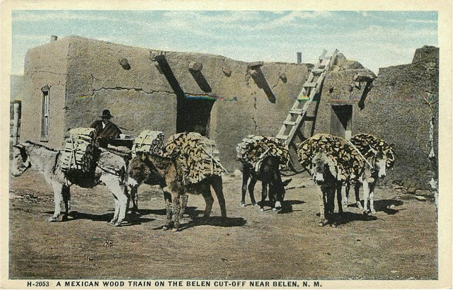 A Mexican Wood Train on the Belen Indian Postcard