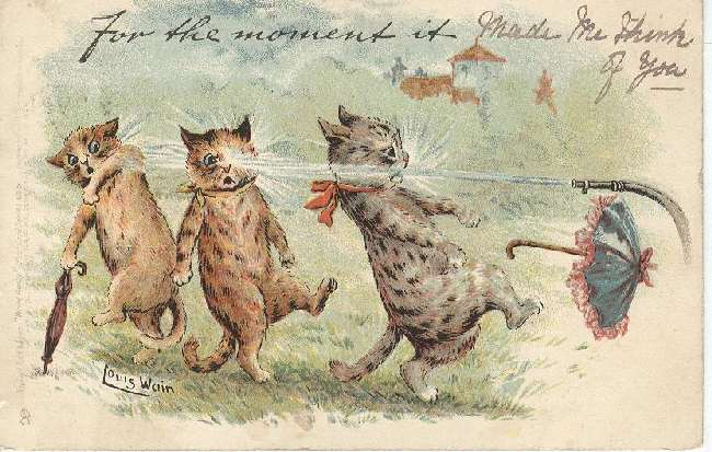 Cat Postcard - Louis Wain For the moment it... 1903