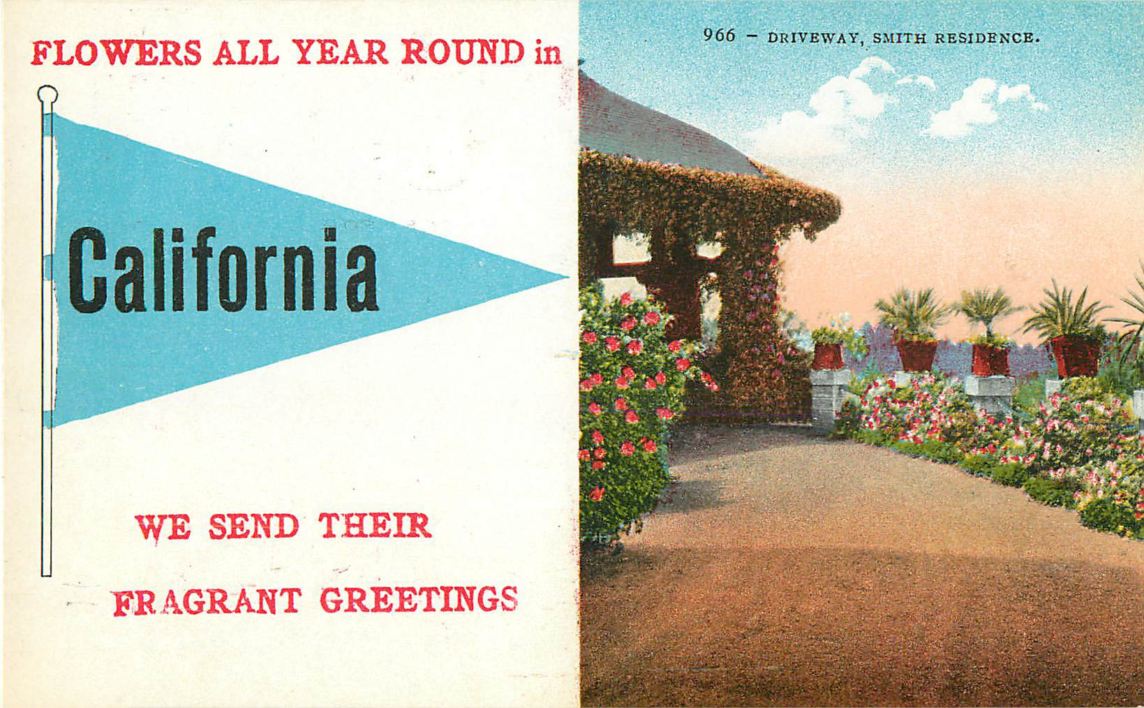 Flowers All Year Round in California - Pennant Postcard