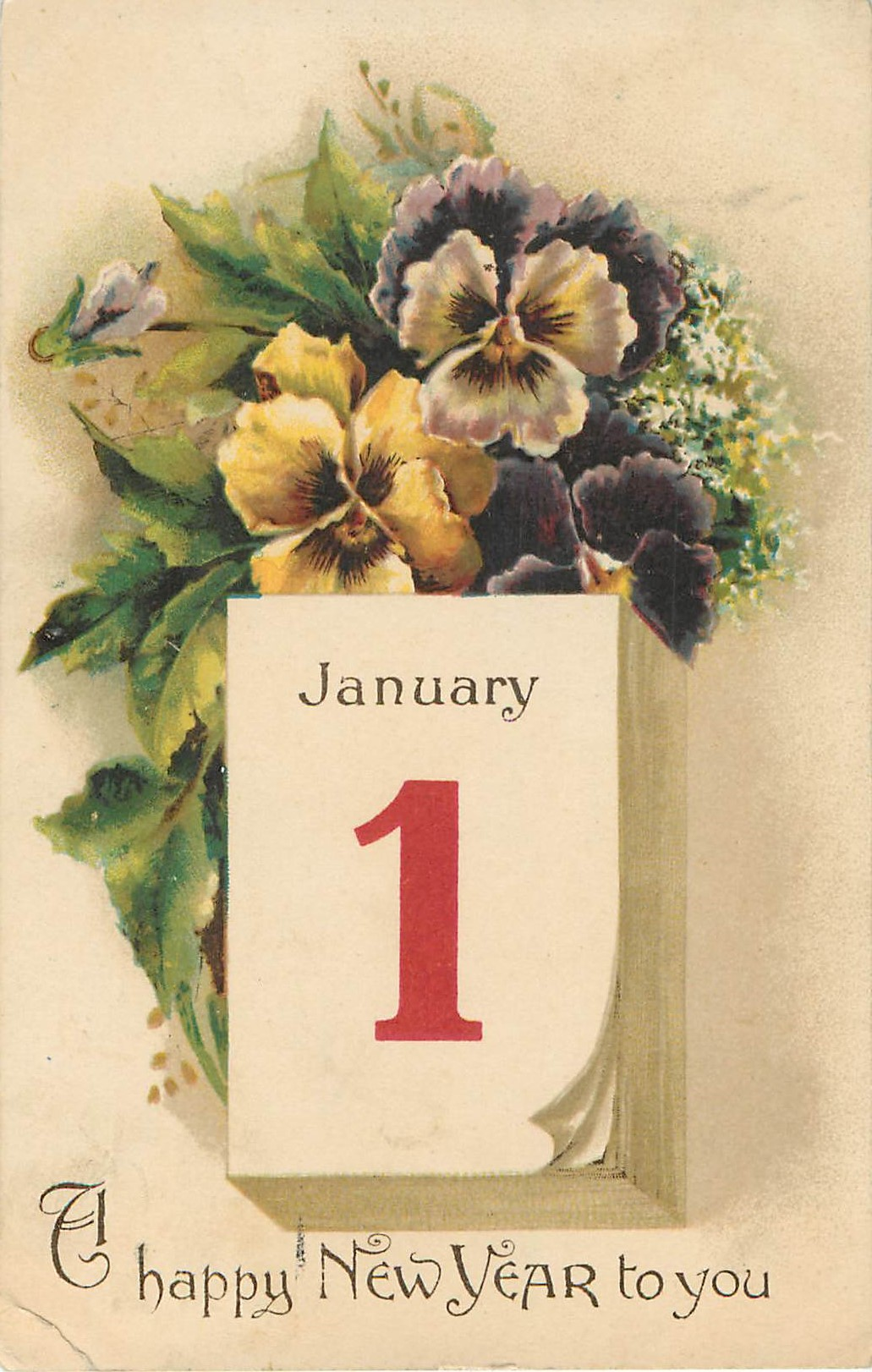 Happy New Year to You Pansy