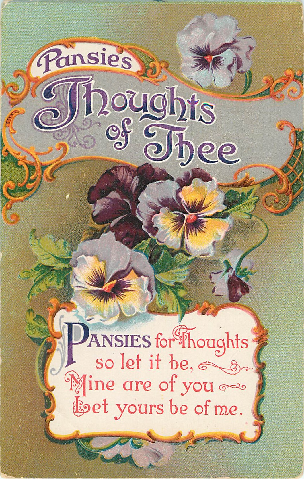 Pansies Thoughts of Thee