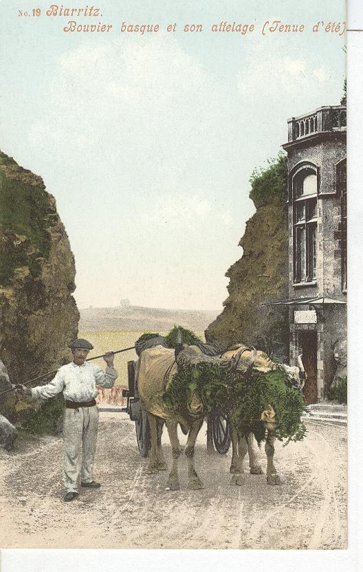 Biarritz French Farming Man With Two Bulls