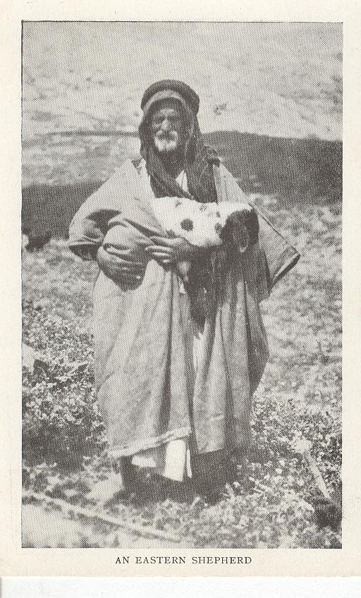 An Eastern Shepherd