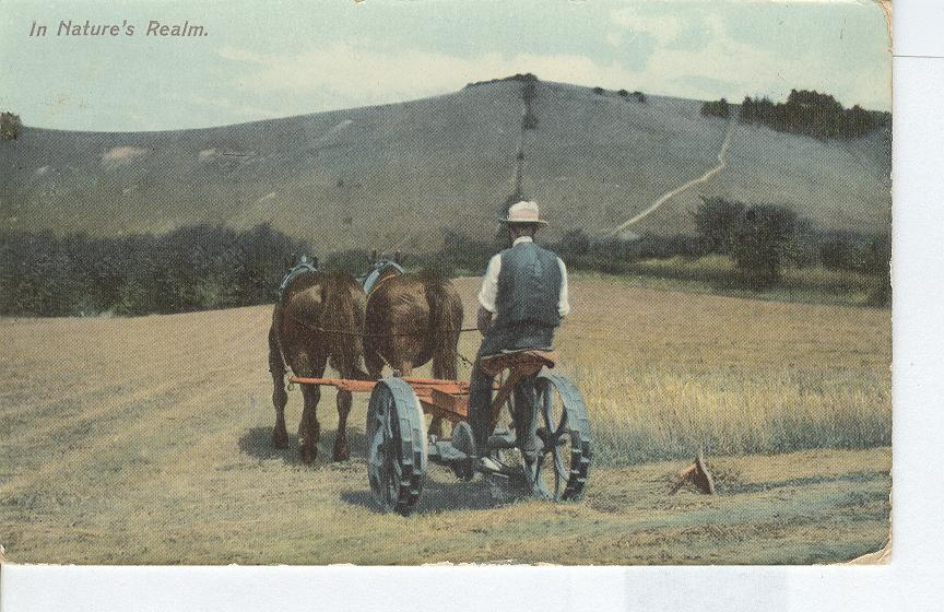 In Natures Realm...Horses with Antique Mower...Farmer